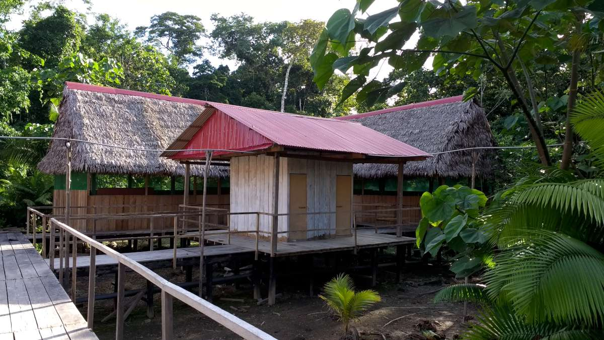 amazon lodge cabin