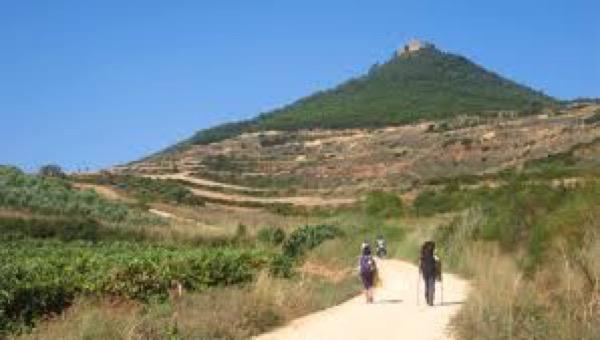 The Camino Path